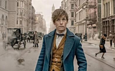 Dokázal Eddie Redmayne a jeho Fantastické zvery dorovnať čaro a kvality Harryho Pottera? (Recenzia)