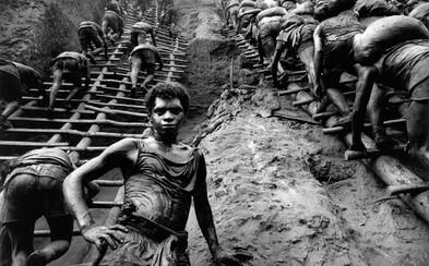 Dokument The Salt of the Earth ocenia zanietení fotografi, ale i obyčajní ľudia spoznávajúc hrôzy našej histórie