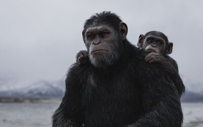 Doteraz najlepší film leta, to je War for the Planet of the Apes. Presvedčia vás o tom zhrnuté názory kritikov v 2 nových ukážkach
