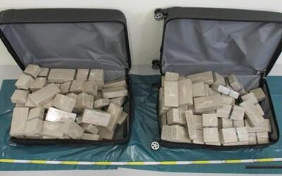 Dva Mongolové pašovali z Česka 70 kilo heroinu v diplomatickém autě s tureckou značkou