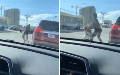 Žena popadla psíka druhé ženy a mlátila ji jím hlava nehlava. Kamera na palubovce zachytila otřesnou rvačku.