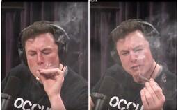 Elon Musk v nejnovějším rozhovoru kouří trávu a popíjí whisky