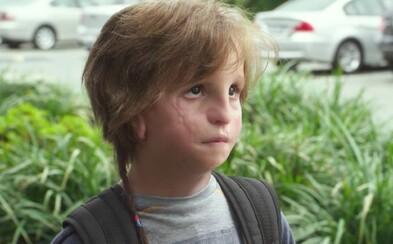 Emotivní film (Ne)obyčejný kluk bude mít pokračování