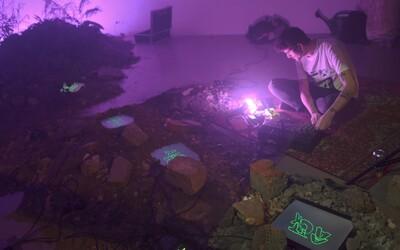 Event Nočná x interveNCia Novej Cvernovky ti prinesie do obývačky jedinečný výber skladieb