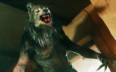 Existují vlkodlaci v reálném životě? Člověk s klinickou lykantropií je přesvědčen o tom, že je vlk