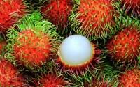 Exotické ovocie dobýva predajné pulty. Poznáte tieto kúsky?
