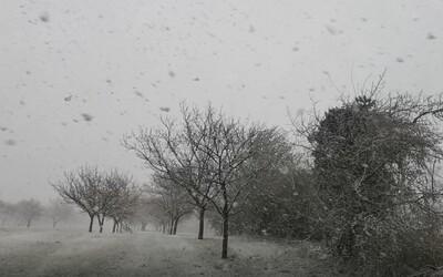 Bratislavu zasiahla náhla snehová búrka. Krúpy niekde dosahovali veľkosť viac ako 1 centimeter.