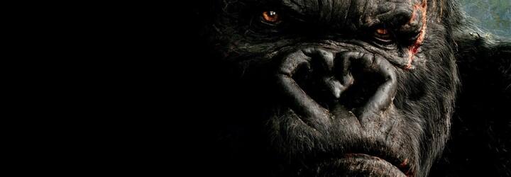 Vychutnajte si prvé fotky z natáčania Kong: Skull Island, ktoré prebieha na Havaji