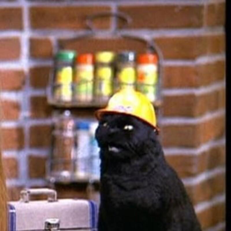 Ako sa volal rozprávajúci kocúr v seriáli Sabrina mladá čarodejnica?