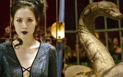 Fanúšikovia sa sťažujú, že do role Nagini bola obsadená kórejská herečka. Ako na to zareagovala Rowlingová?