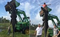 Farmári zabili viac než 350-kilového a 4 a pol metra dlhého aligátora pár metrov od ich statku