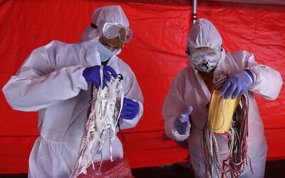 Aktuálne čísla vo svete: Nakazených je 677 648, koronavírusu podľahlo mu viac ako 30-tisíc.