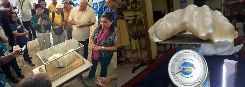 Filipínsky rybár spával 10 rokov nad najväčšou perlou na svete v hodnote 88 miliónov eur. Mal ju ako talizman pre šťastie