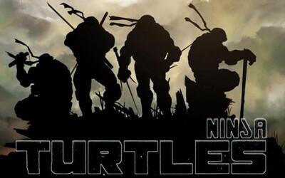 Filmové Ninja Korytnačky na štýlových plagátoch