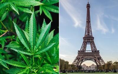 Francie zvažuje legalizaci marihuany