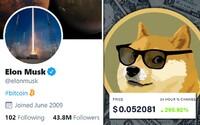 Frustrovaní investoři o 800 % zvedli cenu meme kryptoměny s logem roztomilého psa. Elon Musk zase povzbudil Bitcoin