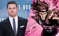 Gambit sa neruší, práve naopak! Channing Tatum aj štúdio z neho chcú spraviť úspešnú sériu filmov