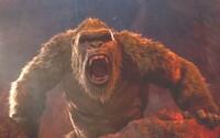 Godzilla v. Kong dosiahol za posledný rok rekordné tržby v kinách. Rozbieha sa konečne filmový priemysel?
