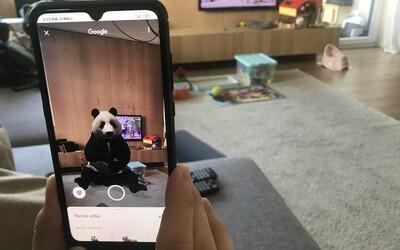 Google představil 3D zvířata. Tygra či krokodýla můžeš mít v obýváku i ty