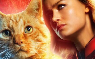 Goose z Captain Marvel bola v 80 % tvorená pomocou CGI. Prečo filmári nevyužívali viac skutočnú mačku?