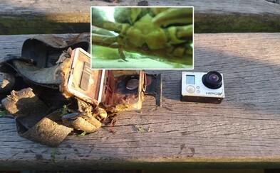 GoPro, ktoré strávilo rok na dne jazera, ale ochránilo svoju pamäťovú kartu. Zaujalo aj zvedavého živočícha
