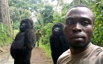 Gorily si zapózovaly na selfie se strážníky, kteří je chrání před pytláky. Nastavují za zvířata vlastní životy