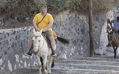 Grécko oficiálne zakázalo vozenie obéznych turistov na zúbožených somároch