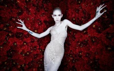 Grimes sa nebála výzvy a priniesla s albumom Art Angels niečo úplne nové (Recenzia)