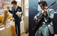 Harry Styles z One Direction je tváří Gucci. V nejnovější kampani pózuje se slepicí