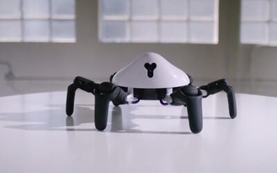 HEXA je obratný robotický pavúk, ktorý vníma okolitý svet. Môžeš ho ovládať cez smartfón a učiť nové pohyby