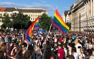 Homosexuálne manželstvá by mala uznávať každá krajina Európskej únie, vyzýva Európsky parlament v novom uznesení