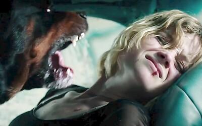 Horor o slepém starci vraždícím zloděje sesadil z trůnu Suicide Squad (Box Office)