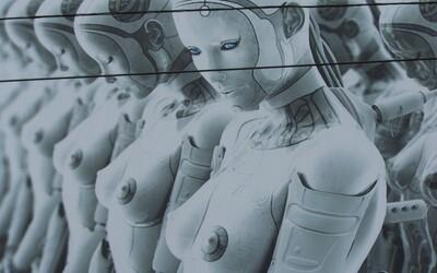 I prostitutky jednoho dne nahradí roboti. Sexuální revoluce by měla nastat už kolem roku 2050
