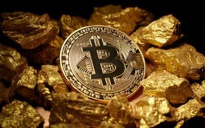 Iba 1000 ľudí vlastní 40 percent všetkých Bitcoinov na svete. Nazývajú ich veľrybami a vedia radikálne ovplyvniť trh
