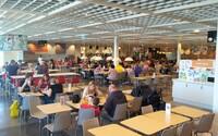 IKEA v Praze na Černém Mostě začala šetřit jídlem. V rámci celosvětové kampaně proti plýtvání už ušetřila více než 176 tisíc porcí jídla