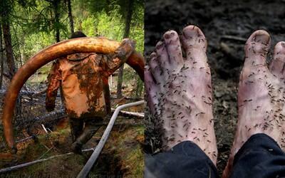 Ilegálne hľadanie pozostatkov mamutov na Sibíri je plné alkoholu, peňazí a nebezpečenstva. Muži smrti unikajú o vlások