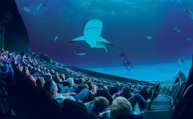 IMAX uviedol nové, kvalitnejšie laserové projektory. Ktoré blocbustery uvidíme s touto technológiou?