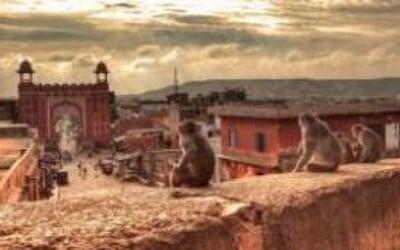 India a Nepál za 70 dní (1. časť)