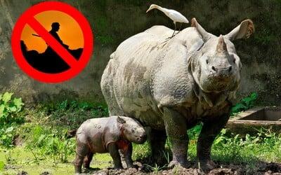 Indický národný park začal neľútostne odstreľovať pytliakov, aby ochránil ohrozenú populáciu nosorožcov