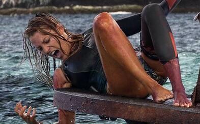 Izolovaná a zranená Blake Lively nesmie stratiť odhodlanie. Čaká ju totiž boj o život so žralokom