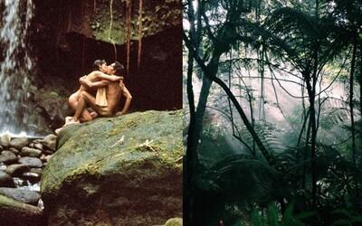 Izolovaný ostrov, nespútaný sex a hromada mladých ľudí. Fotografka zažila v hosteli na tropickom mieste zážitky ako z rozprávky