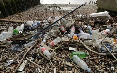 Izraelští vědci vyvinuli náhradu za plast z mořských řas