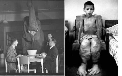Jak lidé oslavovali konec druhé světové války či pití čaje se slonem aneb unikátní fotografické momenty dějin