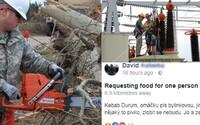 Jak vypadala mohutná vichřice, která se přehnala Českem? Padaly stromy, půl milionu lidí zůstalo bez proudu a na Facebooku volali po kebabu