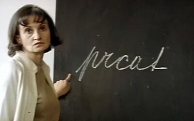 Jak vysoký plat mají učitelé z různých koutů světa? Zdaleka nejhůře si vede Česká republika a Slovensko