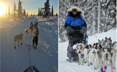 Jako jediná Češka se zúčastnila nejslavnějšího závodu psích spřežení na Aljašce, při němž kruté mrazy klesly i pod −40 °C (Rozhovor)