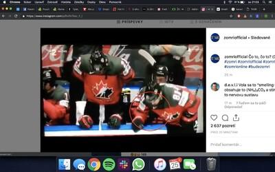 Jakou bílou látku vdechoval kanadský hokejista na střídačce během zápasu s Českem?