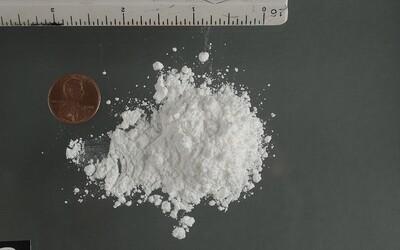 Japonec chtěl propašovat 246 balíků kokainu ve střevech. Zemřel přímo na palubě letadla