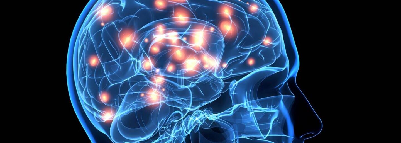Japonskí vedci dokázali zistiť, čo si ľudia v hlave predstavujú. Ich prístroj ukázal detailné kontúry obrazov