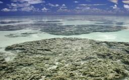 Japonsko začne do moře vypouštět kontaminovanou vodu z Fukušimy. Čína a Jižní Korea protestují
